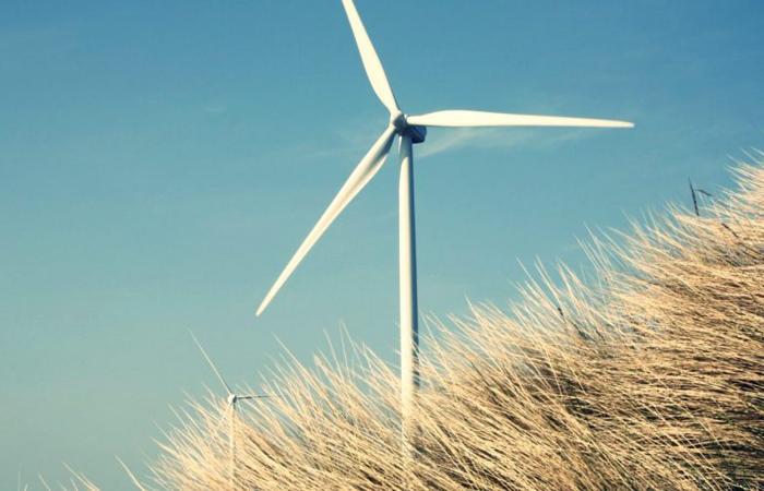 Energie și Resurse Naturale